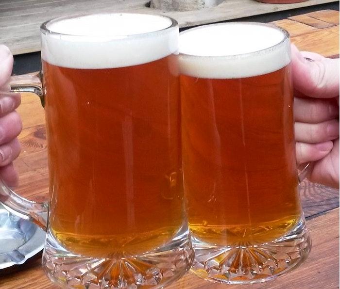 Sabatour Cheers. (C) Roseanna McBain (Copy)
