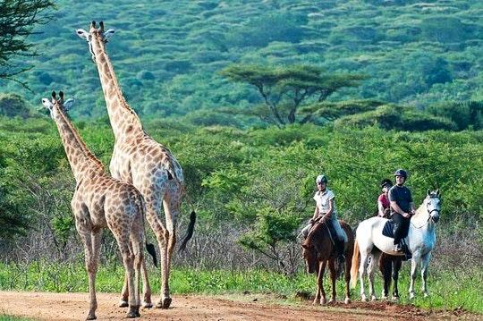 Pakamisa Private Game Reserve