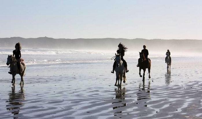 Drikus Beach Rides