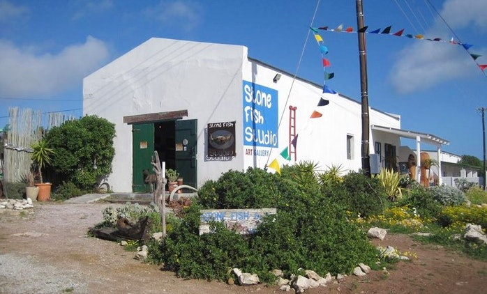 Stone Fish Studio