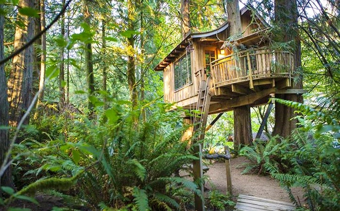 Tree House Point, USA