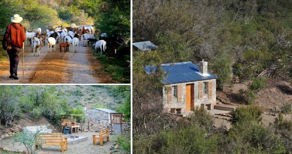 Waterval Farm-Stay