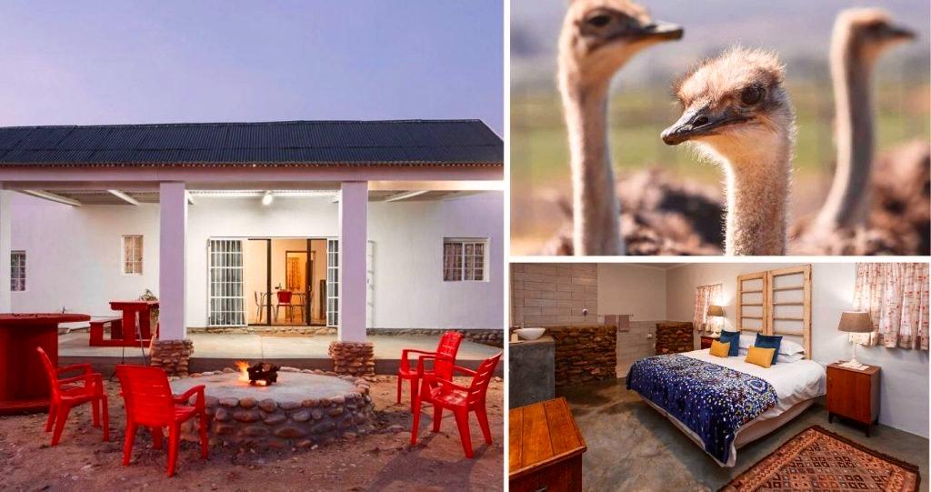 Hazenjacht Karoo Lifestyle - Migeal se Huis