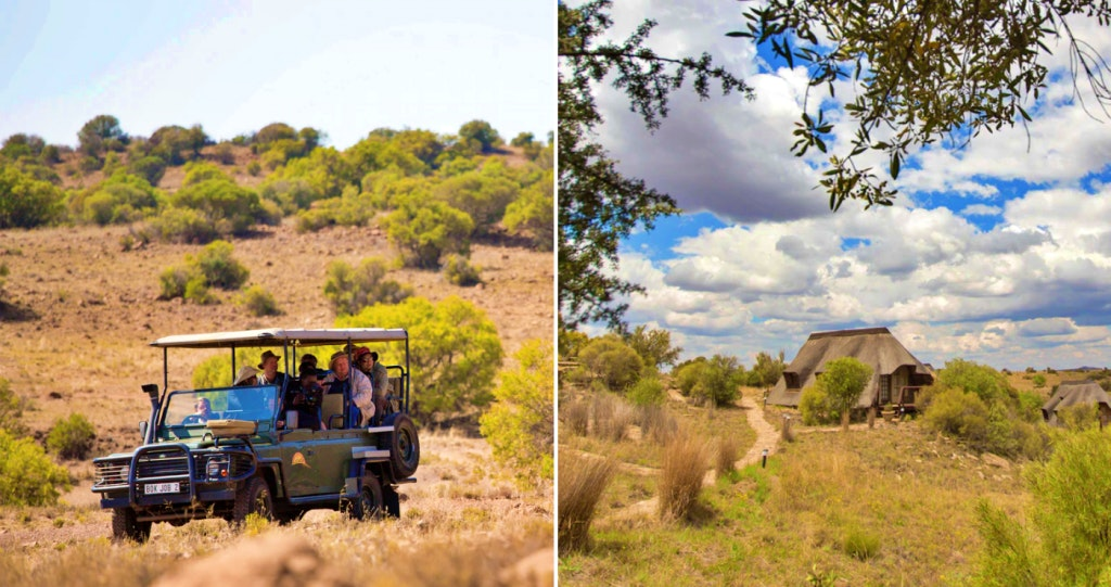 game drives Free State