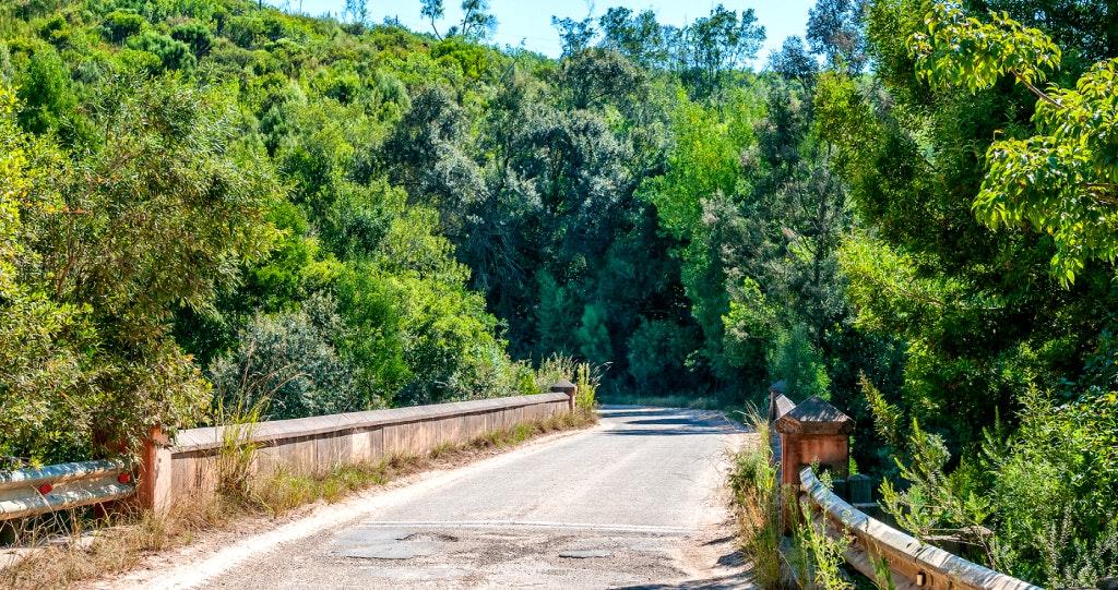Karatara Bigstock knysna seven passes road