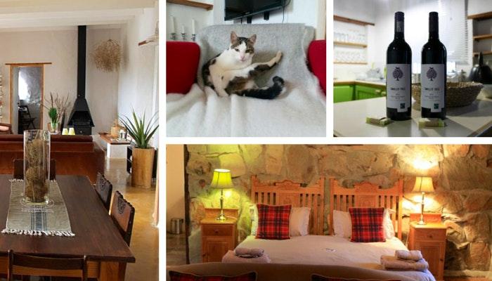 McGregor Accommodations - Varied by Roseanna McBain