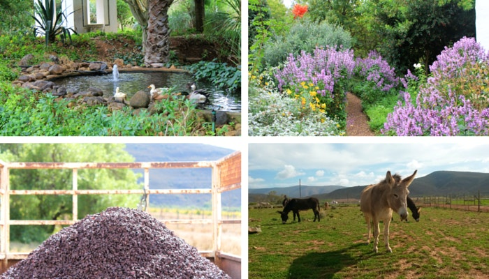 Things to do McGregor - Temenos Retreat, Tangara, Eseltjiesrus. By Roseanna McBain (C) TravelGround